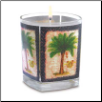 TROPICAL SAFARI CANDLE